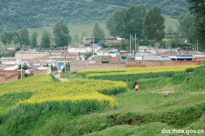 浙大文化之光走进青海山区,给孩子们独特的陪伴体验
